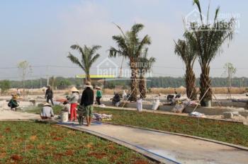 Phúc Hưng Golden nơi đầu tư án toàn với 379 triệu liền kề khu công nghiệp.