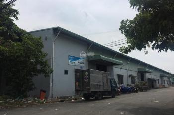 Cho thuê kho KCN Tân Bình, 500m2 - 3000m2, giá 100nghìn/m2. Giá rẻ, kho đẹp
