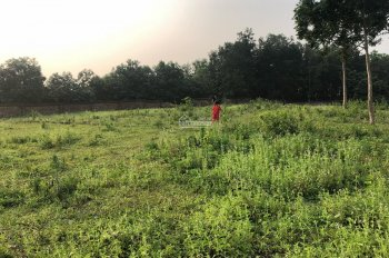 Cần nhượng 8590m2 đất mặt hồ Đồng Chanh view thoáng đẹp Lương Sơn, Hòa Bình LH 0906.299.161