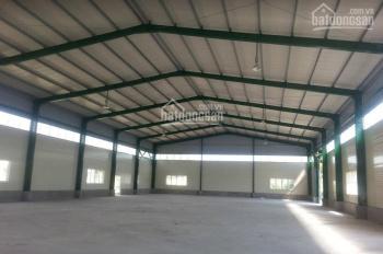 Cho thuê gần 1.4ha nhà xưởng sẵn sàng hoạt động ngay sát mặt đường 5, TT Phú Thái, Kim Thành, HD