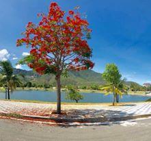 Chuyên tư vấn mua bán đất nền Golden Bay giá tốt nhất dự án. Liên hệ 0333718035- Phượng