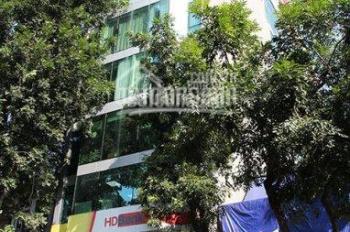Cực hiếm, tòa nhà 9 tầng, 95m2, mặt phố Bà Triệu, lô góc, giá 46 tỷ