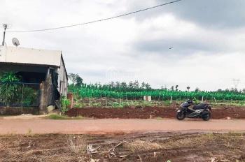 Bán 120m2 đất mặt tiền đường nhựa Trảng Bom, chỉ cần thanh toán 50% lãi suất 0% nhận đất xây nhà