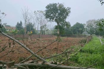 Chính chủ cần bán mảnh đất 902m2 gần KCNC Hòa Lạc, đất tăng giá nhanh, X2 sau 1 năm