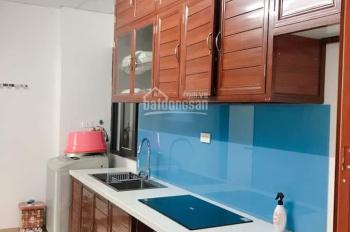 Bán chung cư @Home 987 Tam Trinh, DT 55m2, 2 ngủ, 2 vs, sàn gỗ, tủ bếp, nóng lạnh, điều hòa