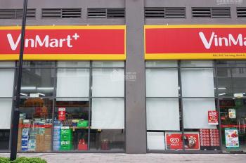 Cho thuê shophouse ngay chung cư Florita khu Him Lam quận 7