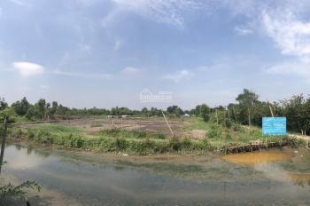 Cần tìm nhà đầu tư cho 39ha đất Bình Chánh, Trần Văn Giàu, Mai Bá Hương