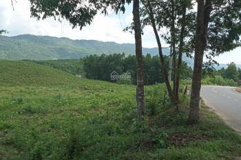 Bán đất trồng cây 1.2ha Hoà Phú mặt tiền Quốc lộ 14G