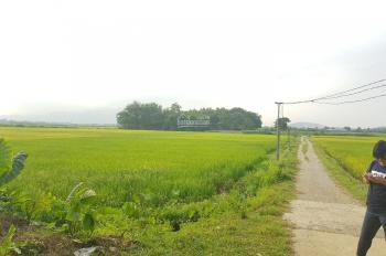 Bán 2144m2 thổ cư, xa khu dân cư, xung quanh là cánh đồng Nhuận Trạch, Lương Sơn, Hòa Bình