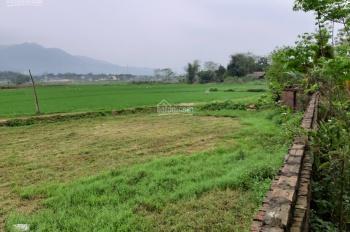 Nhượng 2506m2 đất trang trại nhà vườn, view cánh đồng lúa, tầm nhìn thoáng Lương Sơn, Hòa Bình