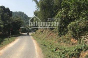 Cần bán 11ha đất RSX bám mặt đường lớn tại Kim Bôi