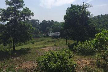 Cần bán mảnh đất 1441m2 vew thoáng tại đồng chanh xã nhuận trạch