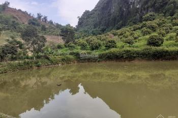 Bán đất trang trại cực đẹp tại Kim Bôi, Hòa Bình có diện tích 5.1ha (51.319m2)