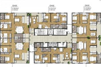 Bán CC Times Tower, 1505 - T2: 107,5m2 và 1603 - T2: 127m2, giá 29tr/m2, SĐCC. LH 0977.989. Ba48
