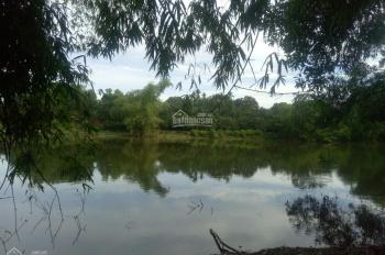 Bán 14000m2 đất, bám hồ hơn 100m, gần khuôn viên làng Mít, tại Sơn Tây Hà Nội