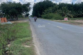 Bán đất mặt tiền Quốc lộ N2, xã Thạnh Lợi, Bến Lức, LH 0902999234