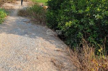 Cần bán 3007m2/1.1 tỷ đất vườn, xã Thạnh Hòa, gần cầu Công Si, LH 0902999234