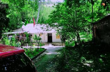 Bán đất làm nghỉ dưỡng cạnh sân golf Phượng Hoàng thị trấn Lương Sơn DT: 1,5ha giá siêu rẻ