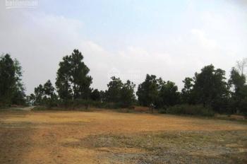 Cho thuê đất MT Trường Sơn - 900m2