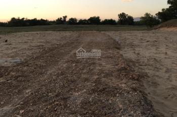 Cần bán 8,6 sào đất cây trồng gần QL1A 550tr/sào