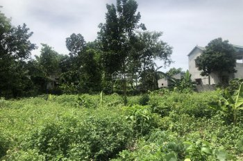 Bán gấp 1064m2 view cao thoáng gần hồ Đồng Chanh Lương Sơn, Hoà Bình phù hợp làm nhà vườn, đầu tư