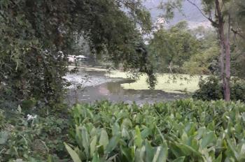 Cần bán đất mặt hồ bao quanh 4.178 m2, 400m2 đất ở. Giá gốc: 1 tỷ 860 triệu