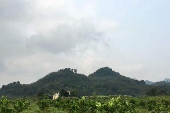 Chính chủ bán 7ha trang trại, đất trồng cây có suối nước nóng tại Kim Bôi, Hoà Bình, 0989.33.45.66