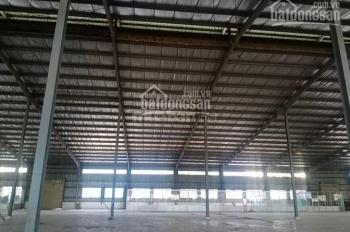 Cho thuê dài hạn kho xưởng sản xuất, DT 6336m2 trong KCN Vinatex Tân Tạo