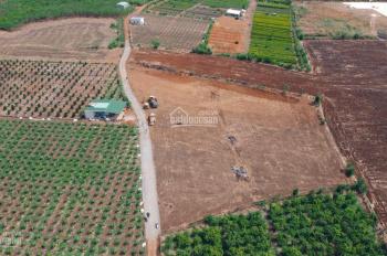 Đất nhà không sử dụng nên sang nhượng lại 1 phần đất ngay cụm công nghiệp Hưng Thịnh gần Quốc Lộ 1A