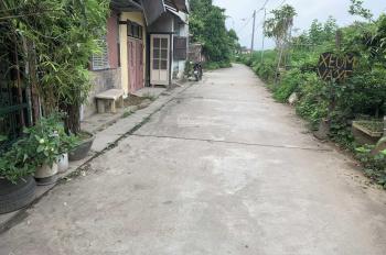 Bán lô đất đấu giá thôn Hội xã Cổ Bi - mặt đường quy hoạch ô tô tránh nhau - lô góc 2 mặt tiền
