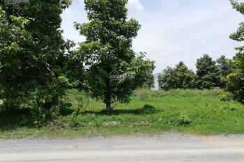 Bán đất KDC đường 10 bên khu 135 đất đẹp giá 1 tỷ 500. LH 0931112822