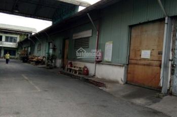 Cho thuê kho MT Quang Trung, huyện Hóc Môn, DT: 4.000m2, giá 80.000đ/m2