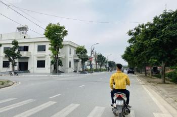 Chính chủ bán 318m2 lô góc đất làng nghề Kiêu Kỵ Gia Lâm ngay sát Vinhomes Ocean Park