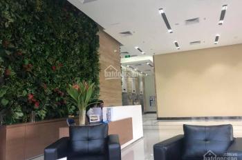 Chính chủ cho thuê căn hộ chung cư Lạc Hồng Lotus N01T5 cho thuê 13 tr/ tháng full