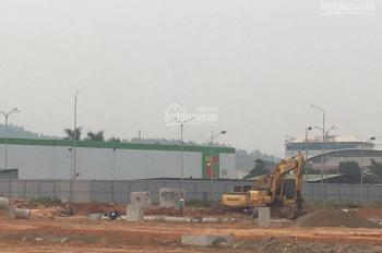 KĐT Nam Vĩnh Yên bán lô đất 300m2 trục kinh doanh đi lại của 1000 hộ cư dân đi Big C mua sắm