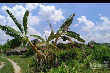 Bán biệt thự vườn, có thổ cư đường Long Thuận và Long Phước, Q9