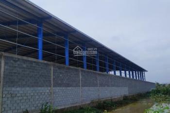 Bán đất sản xuất kinh doanh 1.000m2 Lê Minh Xuân, Bình Chánh.
