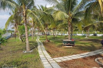 Bán 3448.4m2 đất vườn (CLN) mặt tiền 816 ở Ấp 4 Xã Bình Đức, Bến Lức