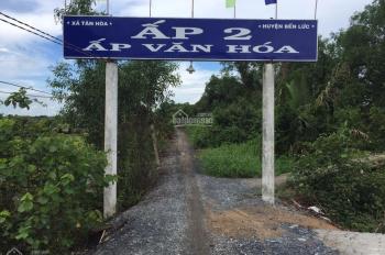Chủ cần bán 5800m2 đất cây hàng năm ở ấp 2 xã Tân Hoà, Bến Lức
