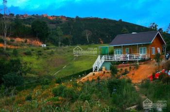 Chính chủ bán nhà gỗ nhỏ và 3300m2 đất chuyển xây dựng 100% ngoại ô TP. Đà Lạt