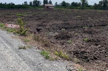 Tôi chính chủ cần bán 1000m2 đất vườn, xã Thạnh Hòa, Bến Lức, cách đường 816 chỉ 1km. Giá 590tr