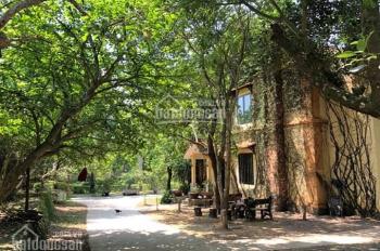 Bán biệt thự đẹp mê ly tại Lương Sơn Hòa Bình