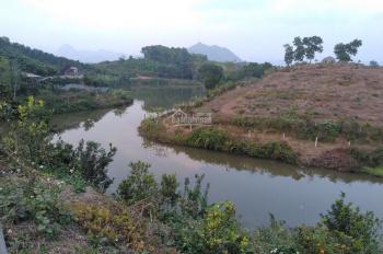 Bán đất trồng cây diện tích 4,8ha có sẵn vườn cam và ao nước lớn tại Kim Bôi, Hòa Bình