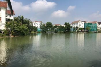 Bán gấp lô Hoa Phượng 4, gần công viên trung tâm Vinhomes Riverside, 384m2, thô, 23 tỷ, 0904668596