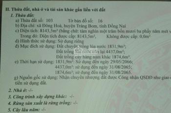 Cần bán 1,3ha đất tại xã Đông Hòa, huyện Trảng Bom, Đồng Nai