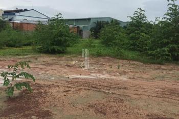 Bán đất kho xưởng 7.400m2 mặt tiền Láng Le Bàu Cò, Tân Nhựt, Bình Chánh.