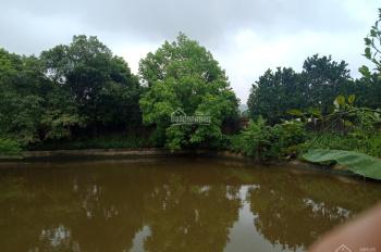 Bán biệt thự nghỉ dưỡng diện tích 3100m2 tại Lương Sơn Hòa Bình