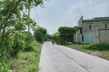 Bán 2 xưởng trống và đất ngay xã Xuân Thới Sơn, huyện Hóc Môn. DT 4.207m2, SHR