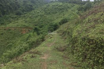 Nhượng 6ha đất rừng sản xuất xã Hợp Kim, Kim Bôi, Hòa Bình giá 1,4 tỷ