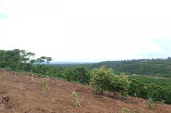 Mua bán nhà đất khu vực Bảo Lộc, Bảo Lâm giá cực tốt
